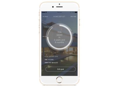 Goals App data visualisation ui ux