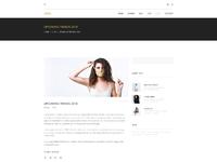 E commerce landing page  blog single post