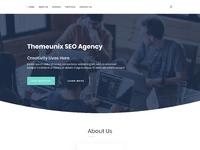 Themeunix seo agency