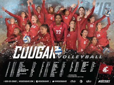 '16-17 Cougars Volleyball Schedule Poster