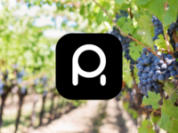 Poepholsrus Boutique Winery