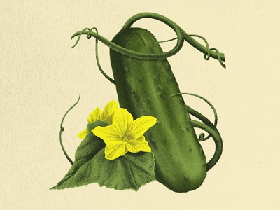 Pickle Heritage