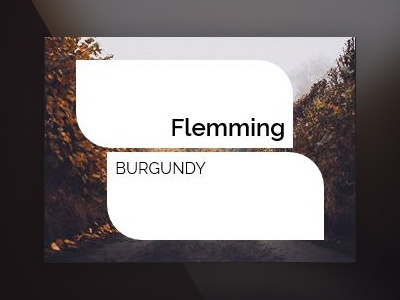 #1259 animated title web css3 image icon image hover card imagehover