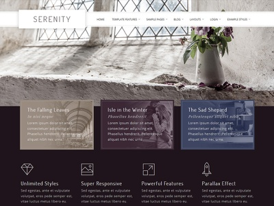 J51 Serenity - Joomla Template webdesign web ui template style slideshow menu joomla gallery earth design cms