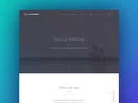 Sociometrika Web Design