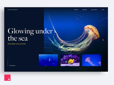 InVision Studio — Under the Sea Portfolio invision studio invisionstudio interaction transition invision design tools animation design