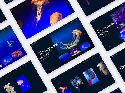 InVision Studio — Under the Sea invision studio invisionstudio interaction transition invision design tools animation design