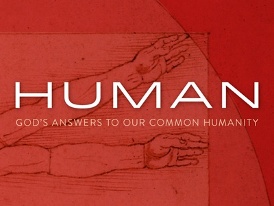 Human for dribbble