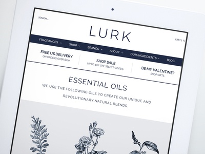 Lurk Responsive Web Design branding responsive design web design