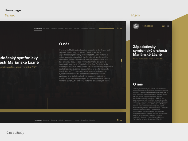 Zso case study dribbble