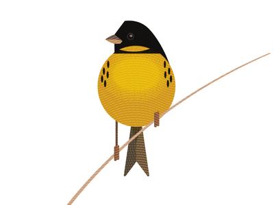 Yellow-breasted Buting texture vector extinction chinese china wildlife bird