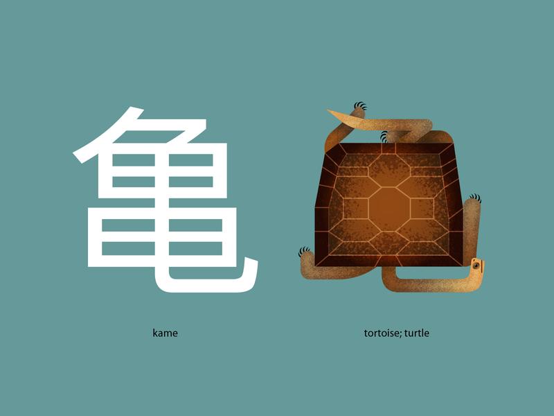 kame midcentury design cartoon illustration animal midcentury modern texture vector pictogram turtle kanji japanese