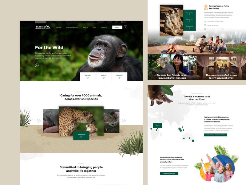 Taronga Zoo UX/UI design biodiversity conservation zoo animals landing page ui  ux design webdesign web