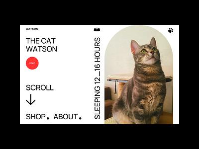 The Cat Watson pet scroll animal bold style cat shop website web design webdesign