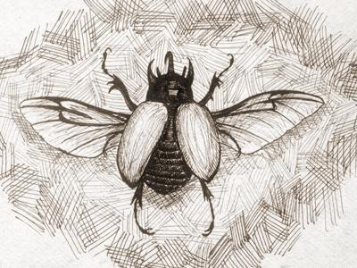 Rhino Beetle Sketch rhino beetle sketch pen micron