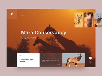 Saving African Wildlife 2018 typography landing landing page creative ux ui design africa discovery nature awsmd