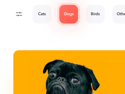 Pets Adoption app layout interaction awsmd design pet app pet care pet adoption onboarding clean clean  creative illustration art animal dog charity donate mobile app uidesign ux flow