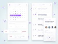 Calendar view of concept financial app