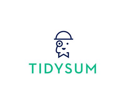 TidySum Logo illustration logo