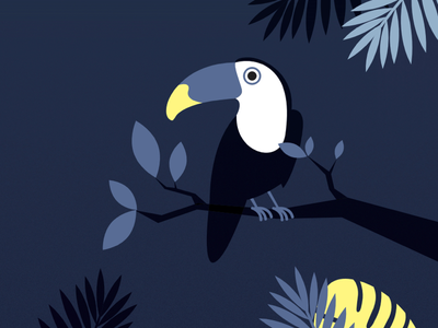 Bird bird children kids books illustration