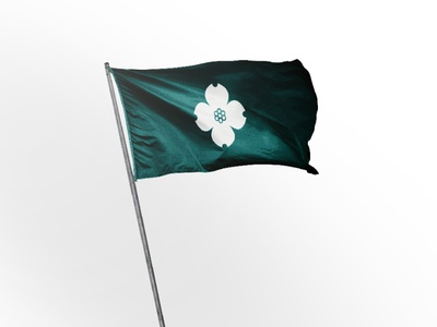 Charlottesville City Flag illustration graphic design design symbol flatdesign flag charlottesville