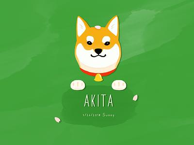 Akita cute illustration dog akita
