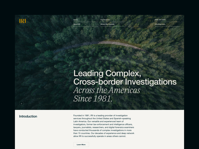 IRI —Home: Alternative | Desktop home desktop nav grid typography type web design investigations investigation iri law legal masthead
