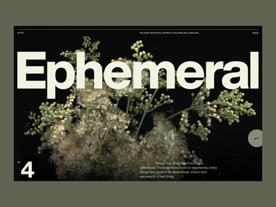 Beautiful Words #4 | Desktop layout gt sectra ui word ephemeral web design helvetica now grid plant flower words typography type