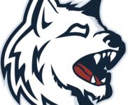 Husky Mascot Design