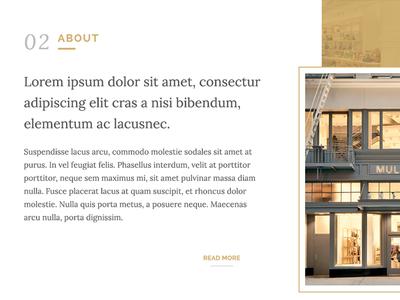 Elegant WIP webdesign typography minimal web design web site web website gold white elegant