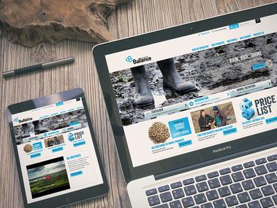 Ballance Website redesign responsive website