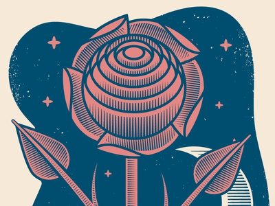 Moon Taxi Print Detail illustration pink navy moon hatching rose