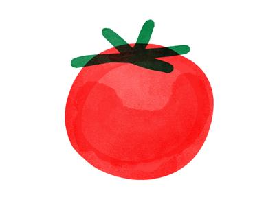 Tomato branding illustration layout color brand design