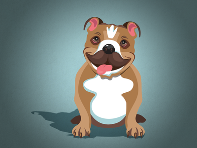 Bulldog Illustration