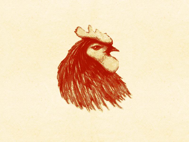 Rooster Illustration vintage retro head handmade bird illustration rooster