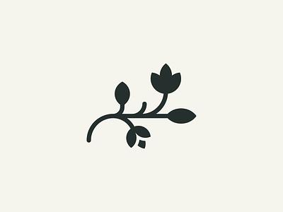 Plant spring cosmetic nature flower logo branch mark branding brand logodesign logo plant