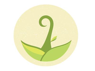 plant vector plant illustration