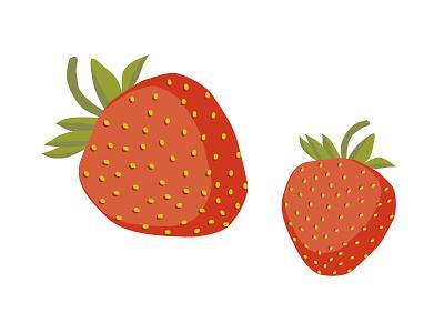 strawberries fruit illustrator vector plant illustration