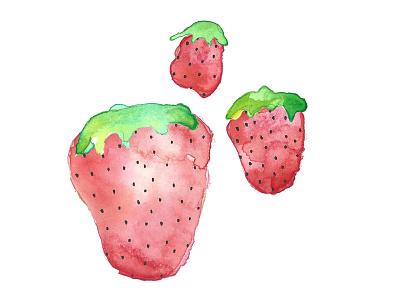 More strawberries! adobe photostop strawberries fruit ink illustration watercolor