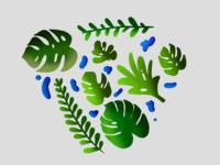 Plants 🍃