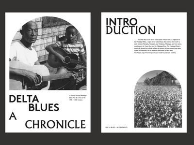Mississippi Blues - A chronicle. Cover logo illustration website poster type grid minimal layout design