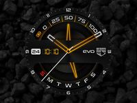 Evolution Watchface