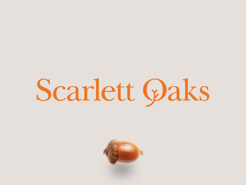 Scarlett Oaks scarlet oak acorn logodesign mark icon emblem branding orange rich serif bold nursing home retirement typogaphy typeface typebased word logo wordmark new york ukraine kharkiv san francisco florida usa