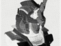 Illustration for Guardian Protocol