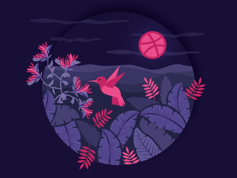 Hello dribbble! bird nature design vector illustration first shot