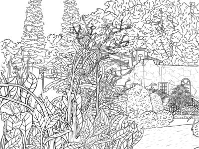 Landscape | coloring book.