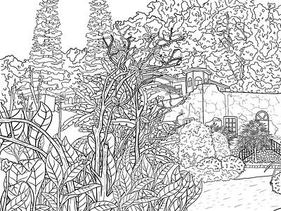 Landscape | coloring book. linea line black and white line art lineart coloring page coloring book landscape photoshop illustration