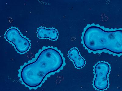 Bacterias blue texture photoshop adobe illustration characterdesign animation background microscope bacteria