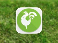 Rooster App Icon