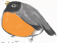 Round Robin Project, first sketch